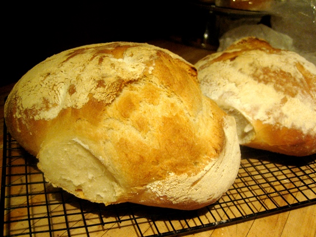 Two_loaves_of_pagnotta_made_with_a_biga,_or_starter_dough._heavenly.